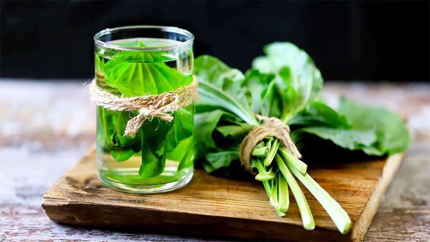 médecine alternative naturopathie